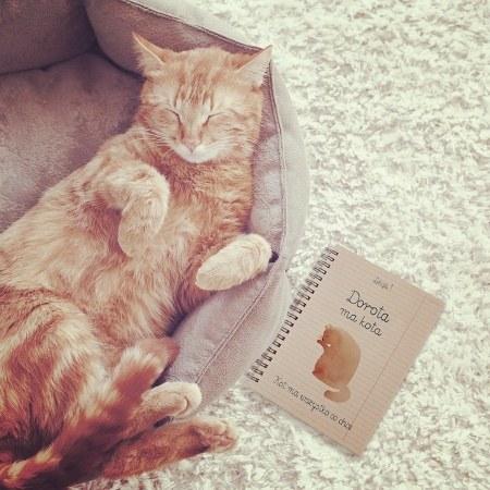 "Personalizowany notes ""Ala ma kota"""