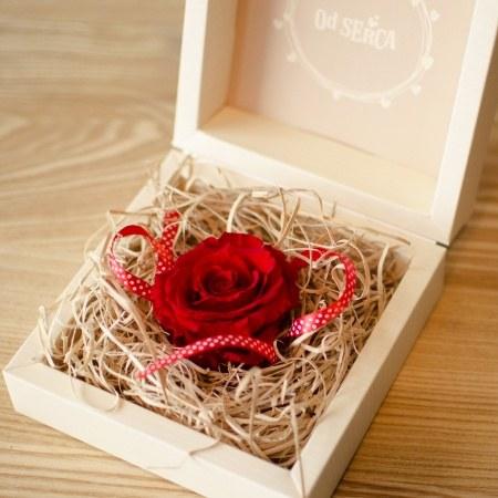 Wieczna róża z Twoją dedykacją